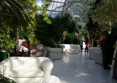 palm house (4)