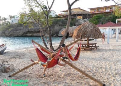 Tropical Hangout Holidays (22)